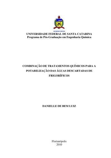 UNIVERSIDADE FEDERAL DE SANTA CATARINA Programa de ...