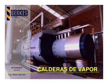 Mantenimiento de Calderas Industriales - Uruman