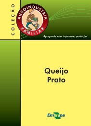 Queijo Prato - Infoteca-e - Embrapa