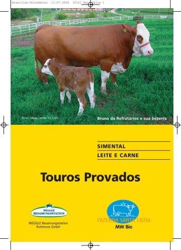 Touros Provados - Fazenda Santa Luzia