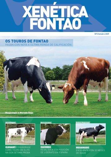 OS TOUROS DE FONTAO - Transmedia 2009