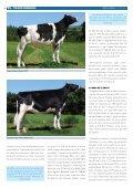 OS TOUROS DE FONTAO - Transmedia 2009 - Page 6