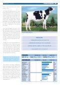 OS TOUROS DE FONTAO - Transmedia 2009 - Page 7