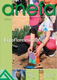 Revista 4 - Anefa