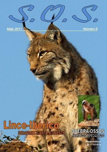 Descarregue a versão em pdf - Colégio Monte Flor