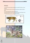 Descarregue a versão em pdf - Colégio Monte Flor - Page 4