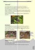 Descarregue a versão em pdf - Colégio Monte Flor - Page 5