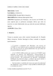 Leia o voto na íntegra - Conselheiro Antonio Carlos Andrada