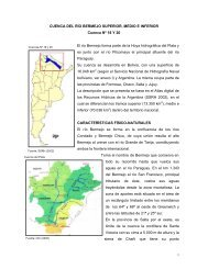 18 cuenca del rio bermejo superior - Subsecretaría de Recursos ...