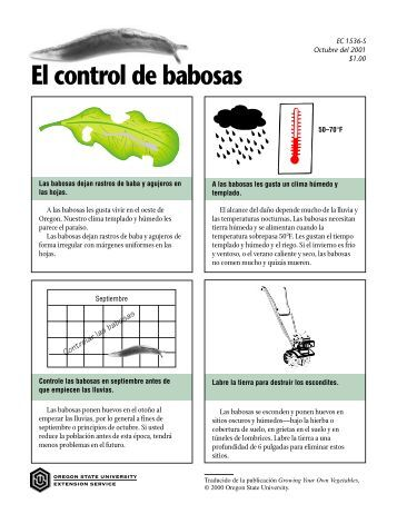 El control de babosas - ScholarsArchive at Oregon State University
