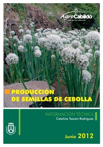 PRODUCCIÓN DE SEMILLAS DE CEBOLLA - AgroCabildo