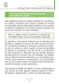 PRODUCCIÓN DE SEMILLAS DE CEBOLLA - AgroCabildo - Page 2