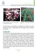 PRODUCCIÓN DE SEMILLAS DE CEBOLLA - AgroCabildo - Page 5