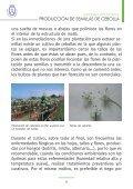 PRODUCCIÓN DE SEMILLAS DE CEBOLLA - AgroCabildo - Page 7