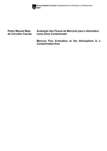 Pedro Manuel Maia de Carvalho Cascão Avaliação dos Fluxos de ...