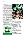 Clique aqui para ver o texto completo - Ceinfo - Embrapa - Page 7