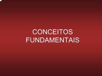 02. Conceitos Fundamentais (visão).pdf - USP