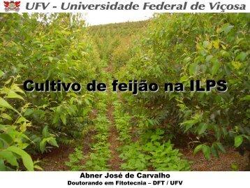 Workshop ILPS Viçosa 2.008 - Emater-MG