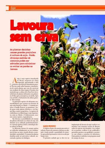 Soja As plantas daninhas causam grandes ... - Grupo Cultivar