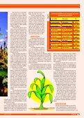Soja As plantas daninhas causam grandes ... - Grupo Cultivar - Page 2