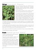 Hortaliças não convencionais / EPAMIG-DPPU - Portal Conselhos MG - Page 4