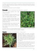 Hortaliças não convencionais / EPAMIG-DPPU - Portal Conselhos MG - Page 5