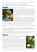 Hortaliças não convencionais / EPAMIG-DPPU - Portal Conselhos MG - Page 6