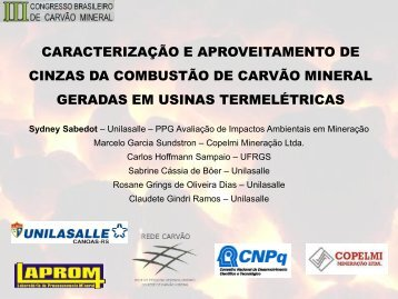 CARACTERIZAÇÃO E APROVEITAMENTO DE CINZAS DA ... - ufrgs