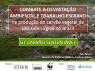 Apresentação GT Carvão Sustentável