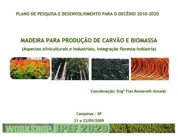 Madeira para Produção de Carvão e Biomassa (Formato PDF ... - Ipef