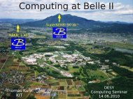 Computing at Belle II - Desy