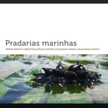 Pradarias marinhas - Adopte uma pradaria marinha
