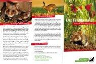 Der Feldhamster - Deutsche Wildtier Stiftung