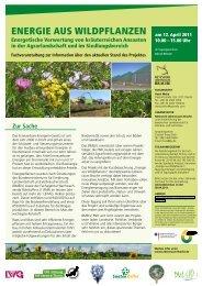 EnErgiE aus WildpflanzEn - Deutsche Wildtier Stiftung