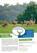 Geben Sie dem Rothirsch Ihre Stimme! - Deutsche Wildtier Stiftung - Seite 4