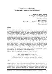 PALMAS ONTEM E HOJE - OBSERVATORIUM