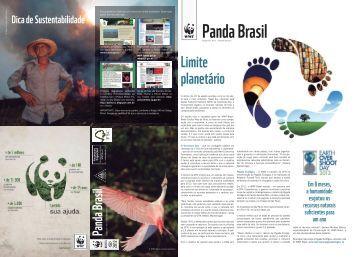 Revista Panda Brasil