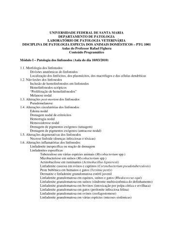 programa - UFSM