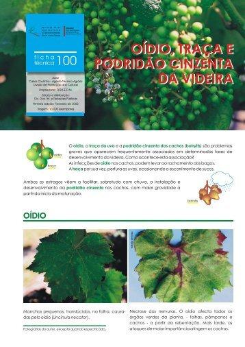 Ficha Técnica nº 100 - Direcção Regional de Agricultura e Pescas ...