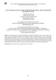 Uso do sensoriamento remoto na análise da ... - mtc-m17:80 - Inpe