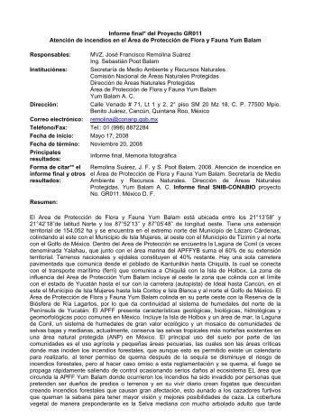 Informe final* del Proyecto GR011 Atención de incendios ... - Conabio