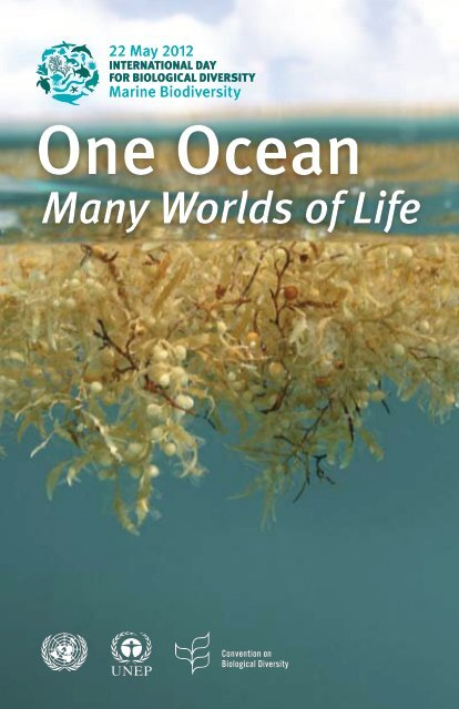 One Ocean, Many Worlds of Life - Convention on Biological Diversity
