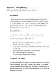 Angebotskatalog Mobile Jugendarbeit zur ... - Diakonie Dresden