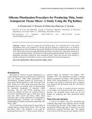 A Study Using the Pig Kidney - Journal of Plastination - International ...
