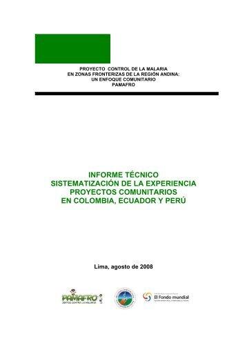 informe técnico sistematización de la experiencia proyectos