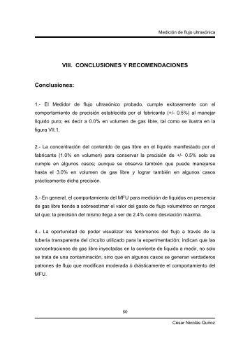 VIII. CONCLUSIONES Y RECOMENDACIONES ... - UNAM