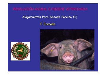 Alojamientos Para Ganado Porcino