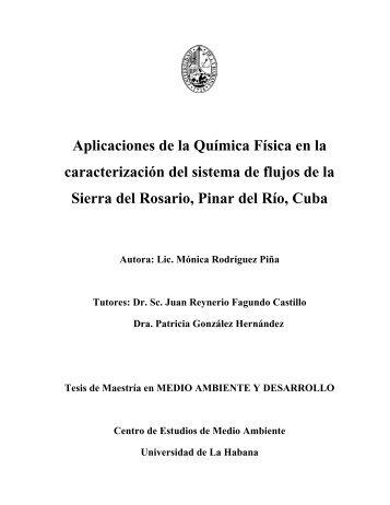 Aplicaciones de la Química Física en la caracterización ...