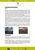 Jornada Valorització 2011 [Tipus: pdf-8030 Kb ] - Consorci Forestal ... - Page 2