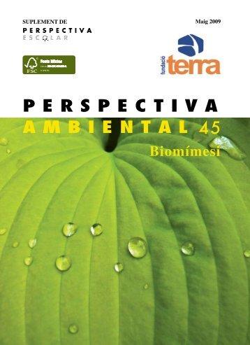 perspectiva ambiental